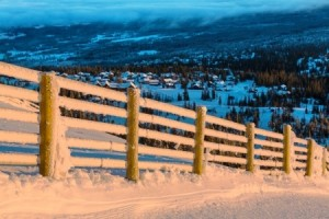 Christmas Break Landscape Scene