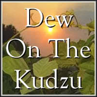 dew-on-the-kudzu
