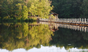 TN Park